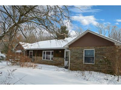 Chagrin Falls Single Family Home For Sale: 16721 Savage Rd