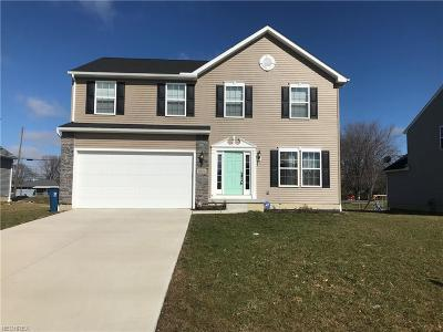 Lorain Single Family Home For Sale: 3934 Woodworth Dr