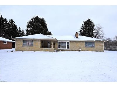 Youngstown Single Family Home For Sale: 150 Mill Run Dr