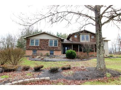 Licking County Single Family Home For Sale: 9175 Miller Rd