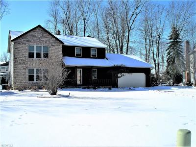 Lake County Single Family Home For Sale: 7060 Brownell Dr