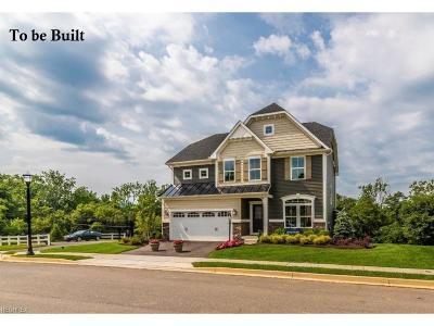 Medina OH Single Family Home For Sale: $229,990