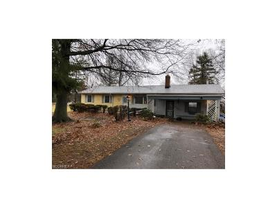 Medina County Single Family Home For Sale: 9491 Daniels Rd