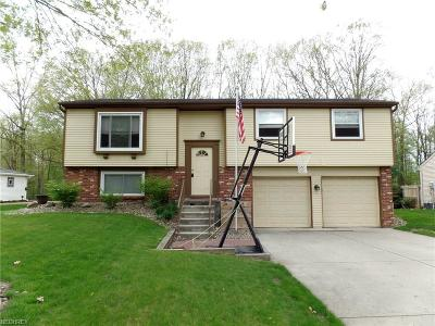 Mineral Ridge Single Family Home For Sale: 1262 Woodledge Dr