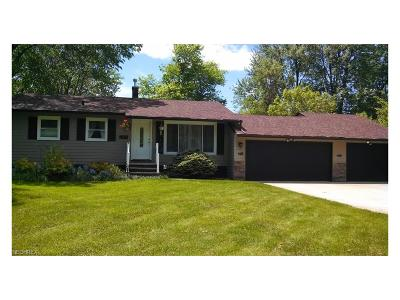 Medina County Single Family Home For Sale: 1400 Diana Dr