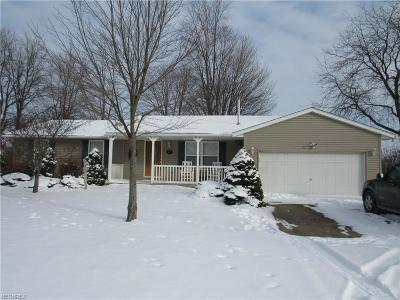 Elyria Single Family Home For Sale: 9373 Bechtel Rd
