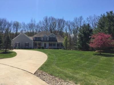 Medina County Single Family Home For Sale: 4184 Fawn Run