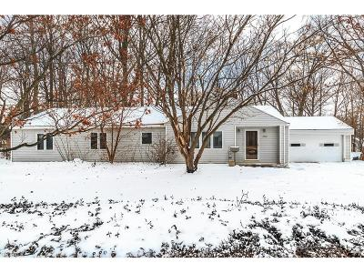 Mentor Single Family Home For Sale: 8238 Broadmoor Rd