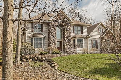 Geauga County Single Family Home For Sale: 17321 Tall Tree Trl
