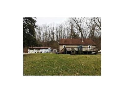 Guernsey County Single Family Home For Sale: 10210 Webster Ln.