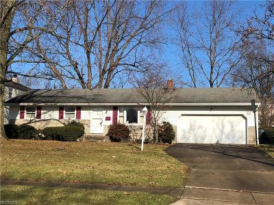 Boardman Single Family Home For Sale: 354 Ridgefield Ave