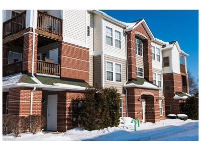 Olmsted Falls Condo/Townhouse For Sale: 23004 Chandlers Ln #347