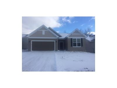 Copley Single Family Home For Sale: 510 Arbor Ln
