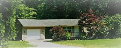 Newbury Single Family Home For Sale: 15339 Ravenna Rd In Newbury