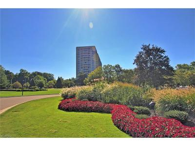 Bratenahl Condo/Townhouse For Sale: 1 Bratenahl Pl #1102