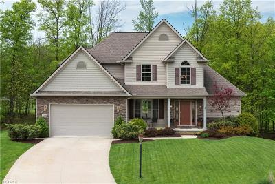 Strongsville Single Family Home For Sale: 20449 Prairie Meadows Pl