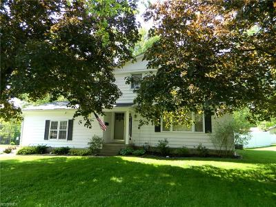 Youngstown Single Family Home For Sale: 3454 White Beech Ln