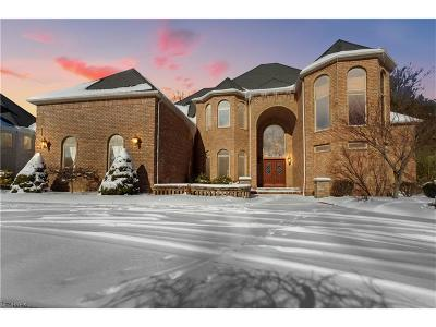 Broadview Heights Single Family Home For Sale: 370 Village Dr
