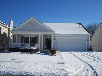 Twinsburg Single Family Home For Sale: 8961 Merryvale Dr #115