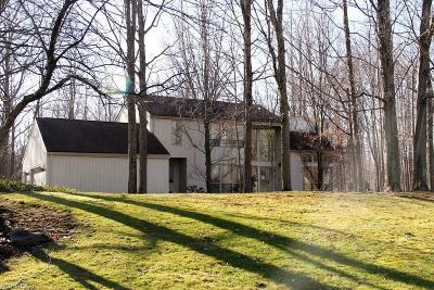 Moreland Hills Single Family Home For Sale: 80 Willow Wood Ln