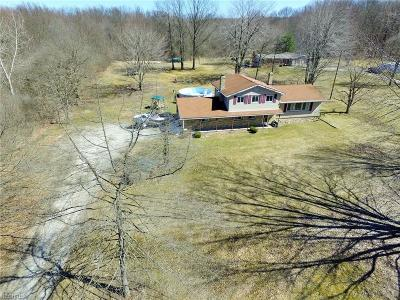 Lake Milton Single Family Home For Sale: 1171 N East River Rd