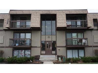 North Royalton Condo/Townhouse For Sale: 9851 Sunrise Blvd #9