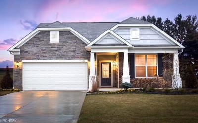 Strongsville Single Family Home For Sale: 18630 White Marsh Ln