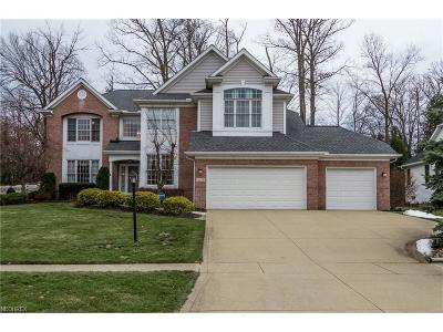 Strongsville Single Family Home For Sale: 18739 Saratoga Trl