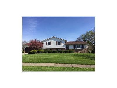Girard Single Family Home For Sale: 51 Mohican Dr