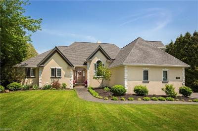 Bay Village, Cleveland, Lakewood, Rocky River, Avon Lake Single Family Home For Sale: 28924 Lake Rd