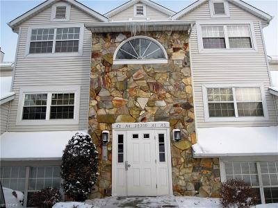 Westlake Condo/Townhouse For Sale: 28200 Detroit Rd #A3