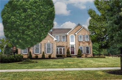 Solon Single Family Home For Sale: 7201 Capilano Dr