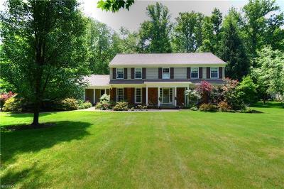 Solon Single Family Home For Sale: 32100 Burlwood Dr