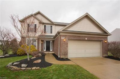 Avon Single Family Home For Sale: 35972 Ithaca Dr