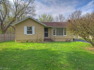 Canfield Single Family Home For Sale: 3701 Shields Rd