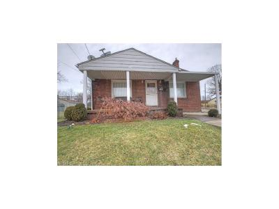 Struthers Single Family Home For Sale: 441 Spring St