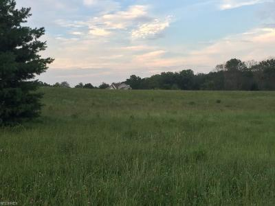 Residential Lots & Land For Sale: Wolf Ave Northeast