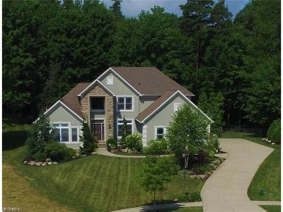 Kent Single Family Home For Sale: 4707 Perie Wood Lane Ln