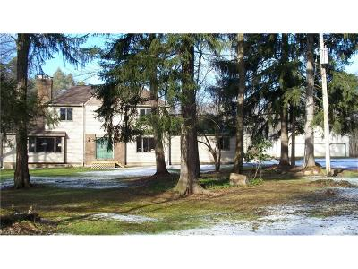 Geauga County Single Family Home For Sale: 15890 Irontree Trl