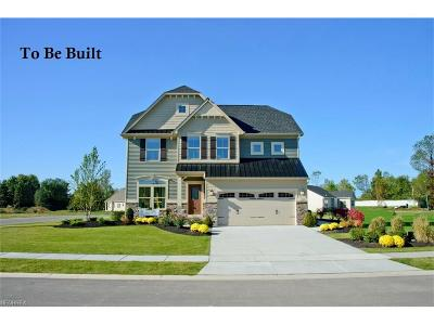 Brunswick Single Family Home For Sale: 279 Autumn Reserve Pky