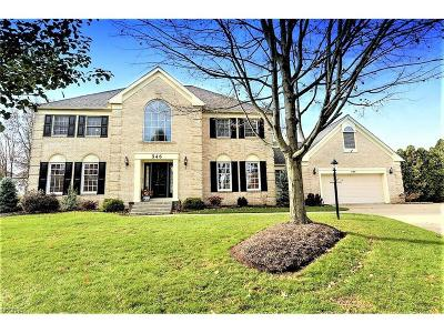 Copley Single Family Home For Sale: 346 Middlebush Cir