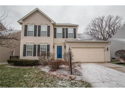 Single Family Home For Sale: 8569 Westfield Park Dr