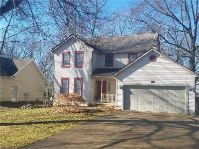 Wadsworth Single Family Home For Sale: 494 Trease Rd
