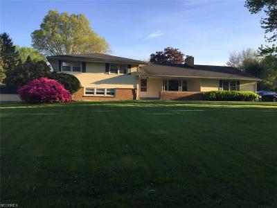 Youngstown Single Family Home For Sale: 3599 Breeze Knoll Dr