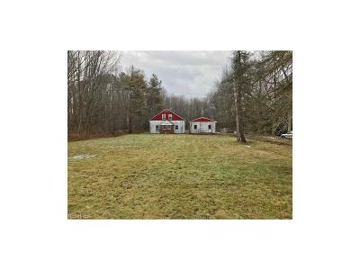 Geauga County Single Family Home For Sale: 16201 Mayfield Rd