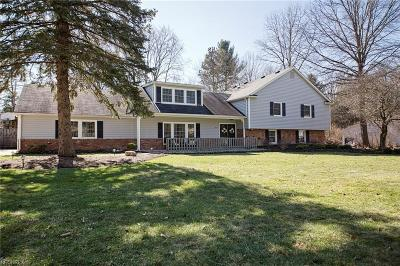Chagrin Falls Single Family Home For Sale: 169 Greenbrier