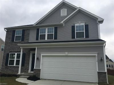 Avon Single Family Home For Sale: 3113 Woodland Trl