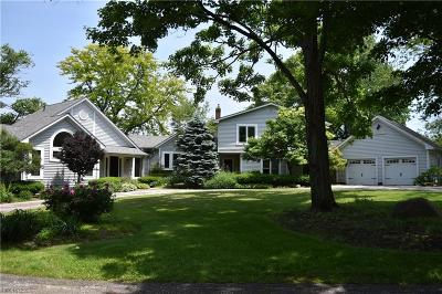 Geauga County Single Family Home For Sale: 11230 Mayfield Rd
