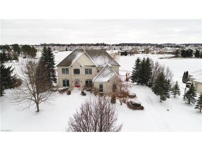 Medina County Single Family Home For Sale: 4004 Fox Meadow Dr