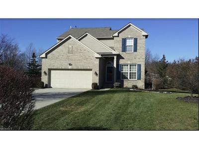 Single Family Home For Sale: 9592 Taberna Ln